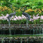 singapur-malayziya-s-plyazhnym-otdyhom-na-krasiveyshem-ostrove-langkavi4