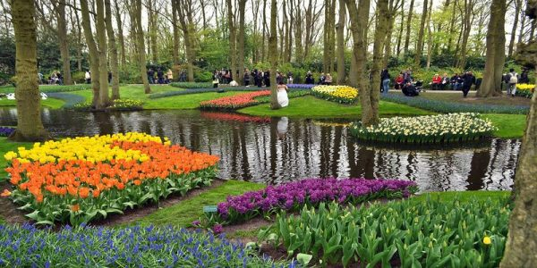 varshava-amsterdam-berlin-park-cvetov-kyokenhof-ekonom0
